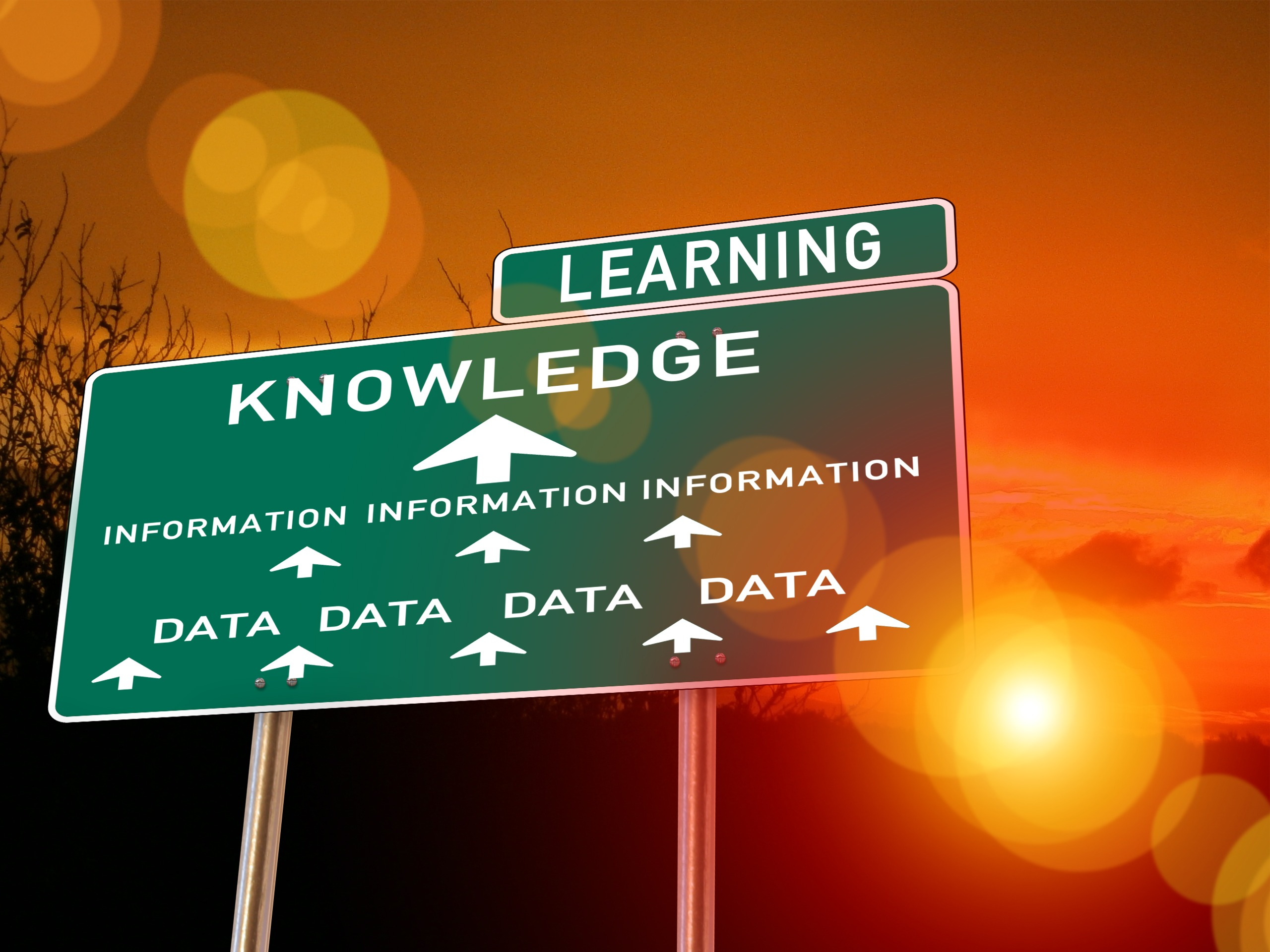 Road sign reading Data, Information, Knowledge, Learning